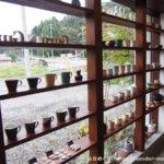 食レポ|うつわCAFE GuruGuru|宮城の作家の器で飲める美味しいコーヒーとスイーツ