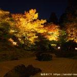 松島の円通院 紅葉ライトアップ2019