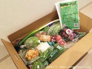 仙台初の「ドライブスルー八百屋」で野菜の詰め合わせを購入してみた感想